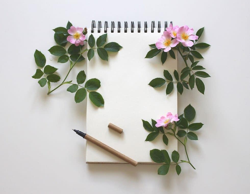 Grâce à la Biographie Personnelle, ou écriture alignée, résolvez vos conflits par l'écriture alignée méthode de Romain Salomon